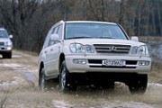 Lexus 470, Toyota Land Cruiser 100. - Сумоисты
